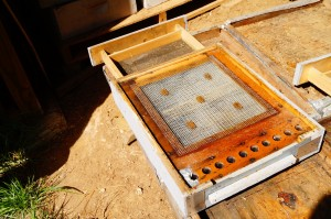 A pollen trap that replaces the normal entrance to a bee hive.